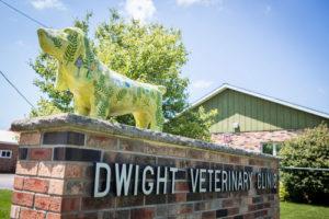 Dwight Veterinary Clinic in Dwight, IL