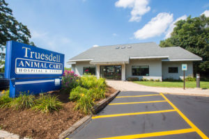 Truesdell Animal Care in Madison, WI