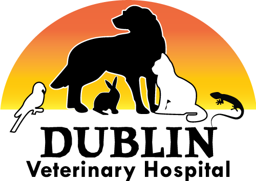 Dublin Veterinary Hospital logo