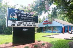 Animal Hospital of N. Charleston