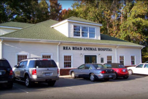Rea Road Animal Hospital in Charlotte, NC