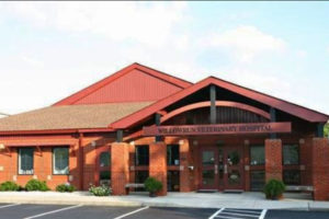 Willowrun Veterinary Hospital in Johnston County