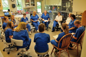 A staff meeting of our Belton Animal Hospital team.