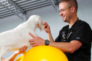 Best Care Pet Hospital in Sioux Falls, SD