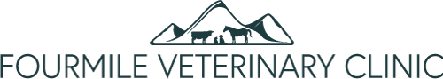 Fourmile Veterinary Clinic logo