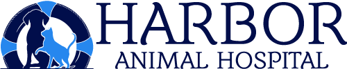 Harbor Animal Hospital logo