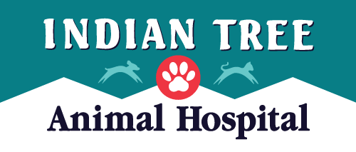 Indian Tree Animal Hospital logo