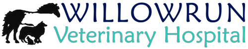 Willowrun Veterinary Hospital logo